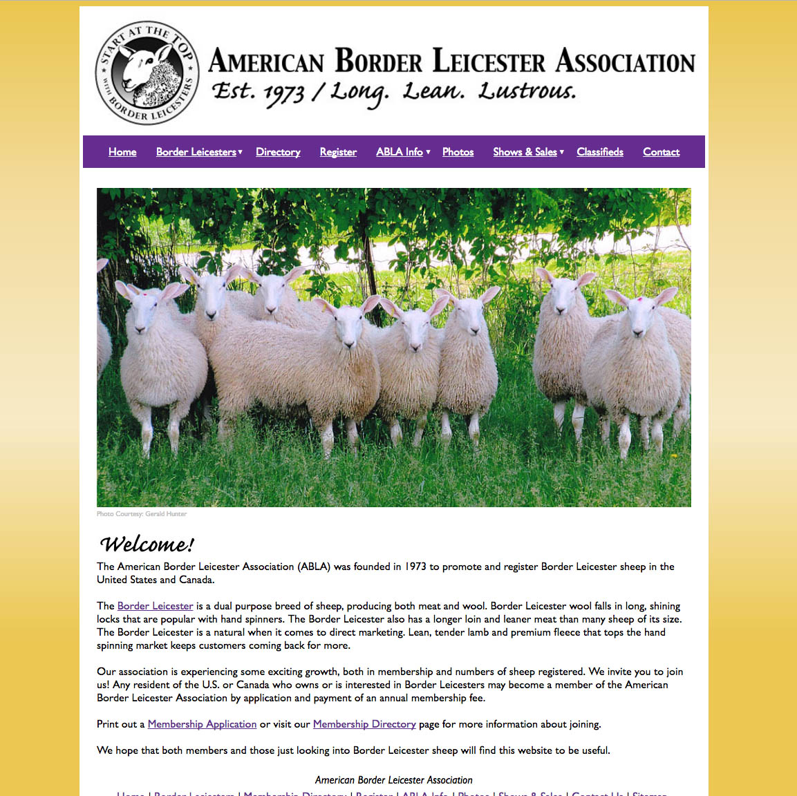 American Border Leicester Association