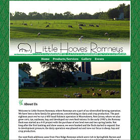 Little Hooves Romneys